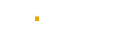 Netexplora logo